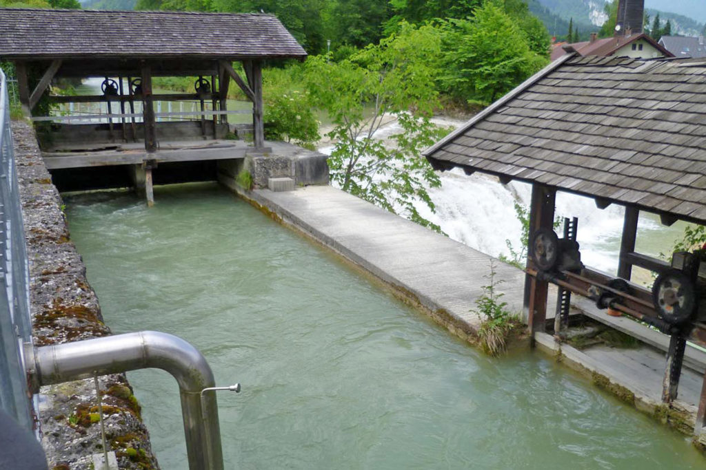 Wasserschnecke am Bergwirtwehr Kiefersfelden - Einlaufwehr